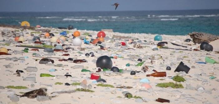Plastikmüll am Strand von Laysan Island, Hawaii.