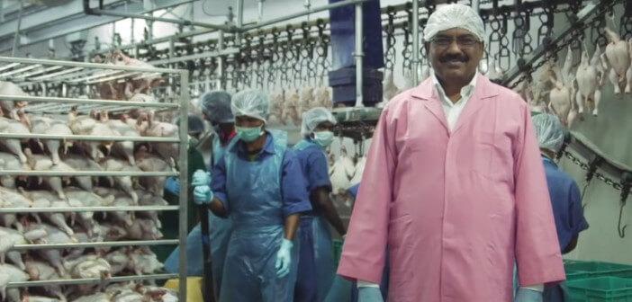 Das Foto zeigt den Hühnchen-Produzenten Bangaruswami Soundararajan von Chicken Saguna vor seiner Produktionsstraße mit vielen Hühnchen im Hintergrund.