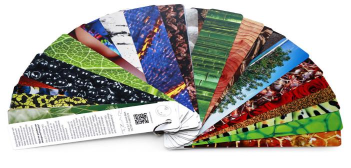 Auf dem Foto ist ein Fächer zu sehen, der auf den einzelnen Blättern unterschiedliche Fotos zeigt.