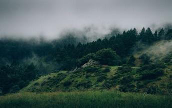 Hügel mit Wald oder Rohstofflager? Was sieht der Mensch in der Natur? Foto: CCO via Pexel.